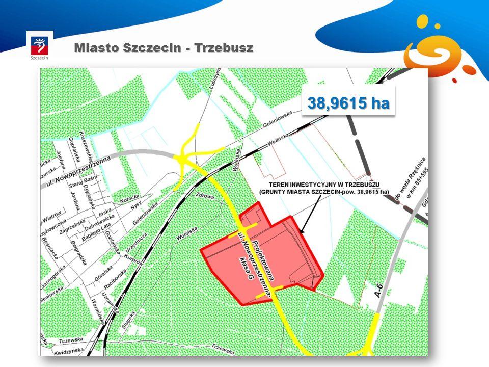 38,9615 ha Miasto Szczecin - Trzebusz