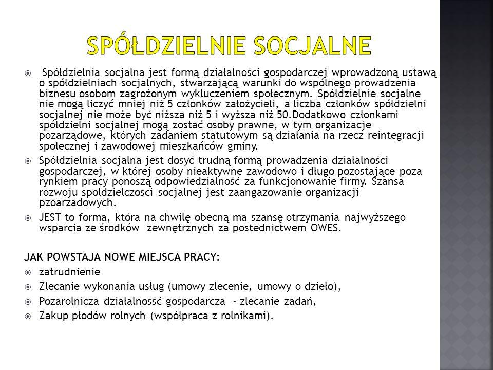  Spółdzielnia socjalna jest formą działalności gospodarczej wprowadzoną ustawą o spółdzielniach socjalnych, stwarzającą warunki do wspólnego prowadze