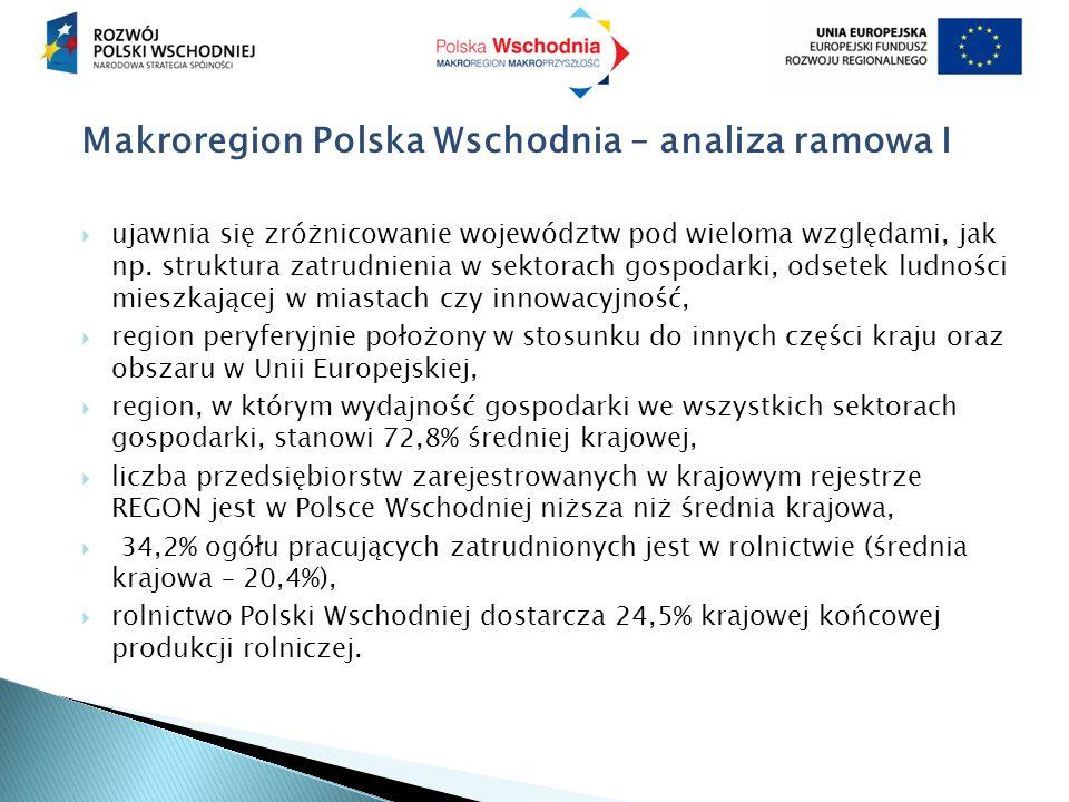 Makroregion Polska Wschodnia – analiza ramowa I  ujawnia się zróżnicowanie województw pod wieloma względami, jak np. struktura zatrudnienia w sektora