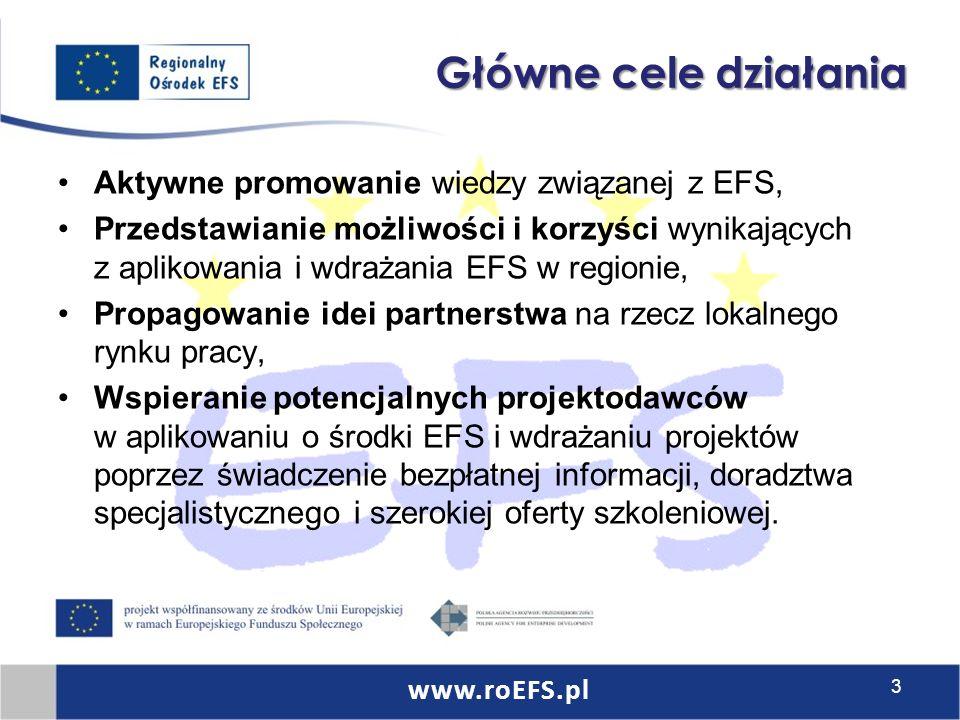 Główne cele działania Aktywne promowanie wiedzy związanej z EFS, Przedstawianie możliwości i korzyści wynikających z aplikowania i wdrażania EFS w regionie, Propagowanie idei partnerstwa na rzecz lokalnego rynku pracy, Wspieranie potencjalnych projektodawców w aplikowaniu o środki EFS i wdrażaniu projektów poprzez świadczenie bezpłatnej informacji, doradztwa specjalistycznego i szerokiej oferty szkoleniowej.