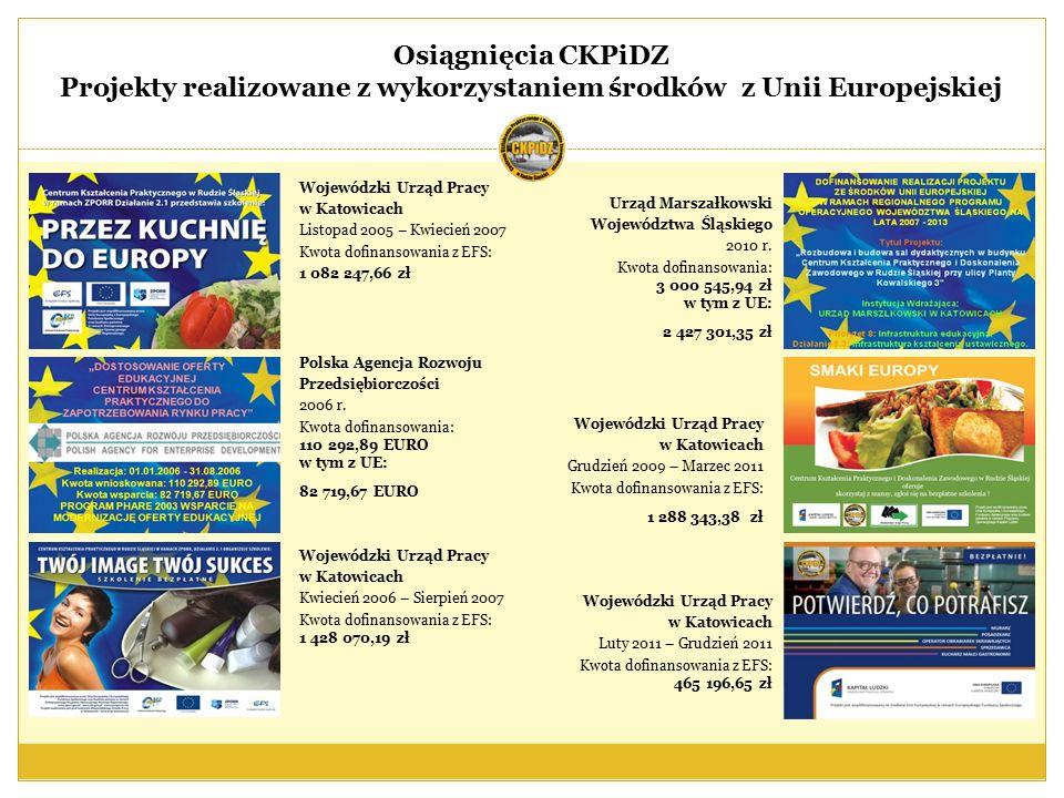 Wojewódzki Urząd Pracy w Katowicach Listopad 2005 – Kwiecień 2007 Kwota dofinansowania z EFS: 1 082 247,66 zł Polska Agencja Rozwoju Przedsiębiorczości 2006 r.