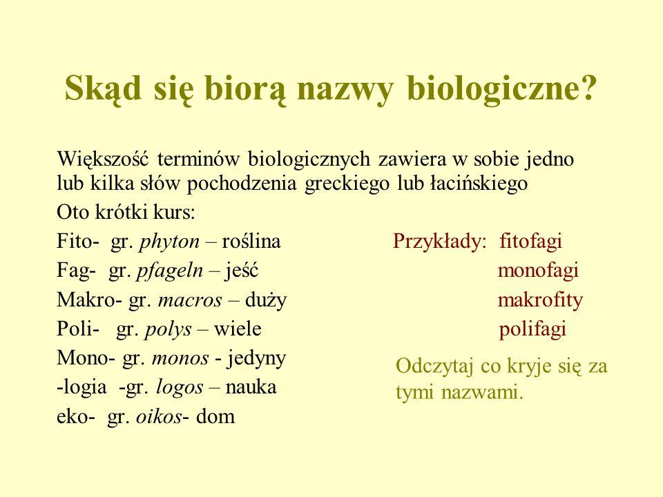 Skąd się biorą nazwy biologiczne? Większość terminów biologicznych zawiera w sobie jedno lub kilka słów pochodzenia greckiego lub łacińskiego Oto krót