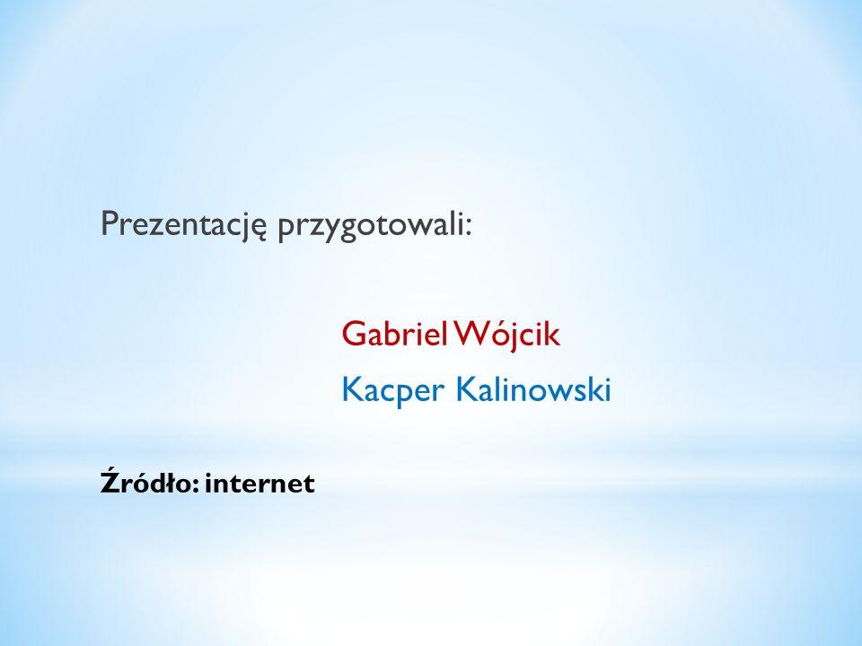 Prezentację przygotowali: Gabriel Wójcik Kacper Kalinowski Źródło: internet