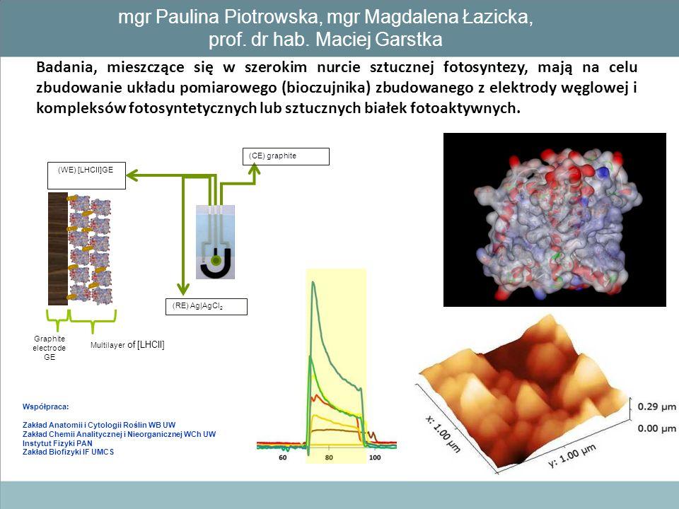 Badania, mieszczące się w szerokim nurcie sztucznej fotosyntezy, mają na celu zbudowanie układu pomiarowego (bioczujnika) zbudowanego z elektrody węgl