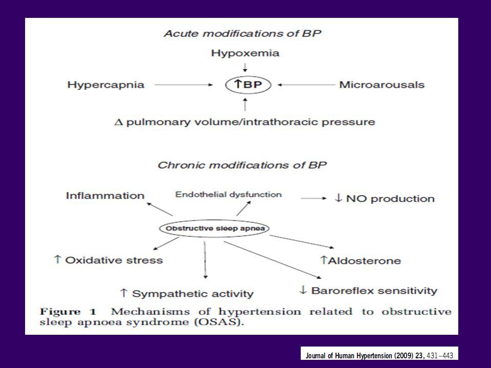Ryzyko rozwoju nadciśnienia tętniczego w ciągu 4 lat, u 709 uczestników badania WSCS AHI = 0 - OR - 1,0 AHI 0-5 - OR – 1,42 AHI 5-15 – OR – 2,03 AHI >15 - OR – 2,89 Po uwzględnieniu wyjściowych czynników takich jak: – nadciśnienie tętnicze, wiek, płeć, BMI, WHR, obwód szyi, palenie tytoniu, spożycie alkoholu Peppard, NEJM, 2000 Badanie SHHS- nadciśnienie tętnicze występowało 1,37 częściej u chorych z OBS (AHI > 30 vs AHI <1,5) Nieto, JAMA 2000