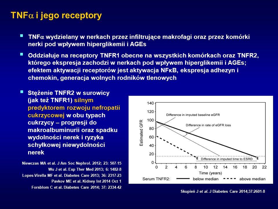 TNF  i jego receptory Skupień J et al.
