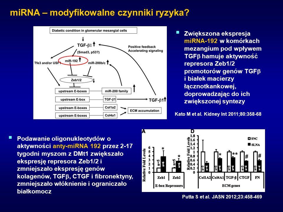 miRNA – modyfikowalne czynniki ryzyka. Kato M et al.