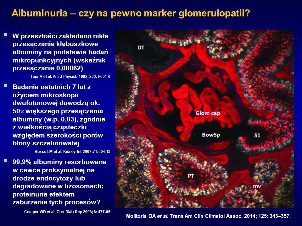 Albuminuria – czy na pewno marker glomerulopatii. Mottl AK et al.