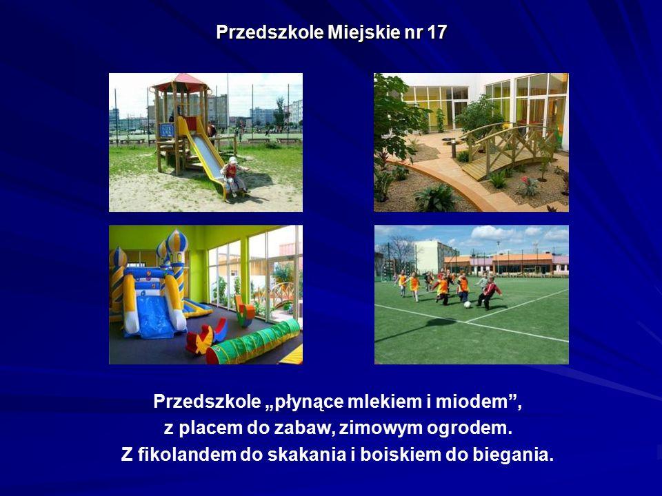"""Przedszkole Miejskie nr 17 Przedszkole """"płynące mlekiem i miodem"""", z placem do zabaw, zimowym ogrodem. Z fikolandem do skakania i boiskiem do biegania"""