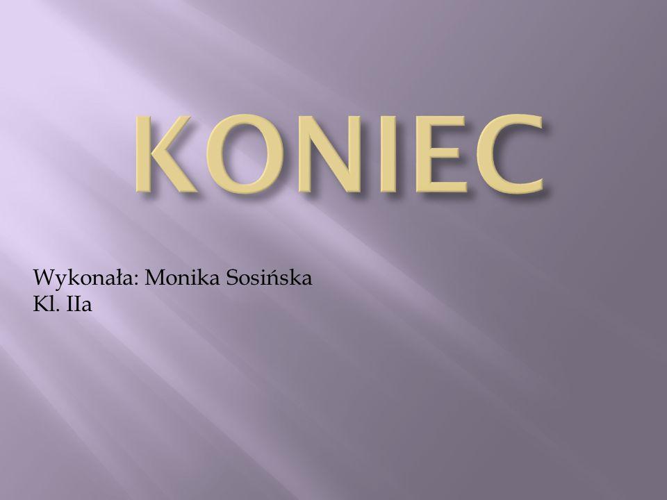 Wykonała: Monika Sosińska Kl. IIa
