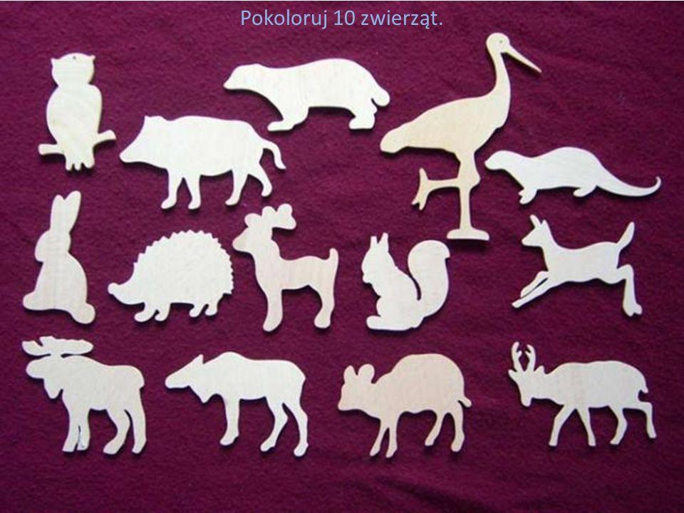 Pokoloruj 10 zwierząt.