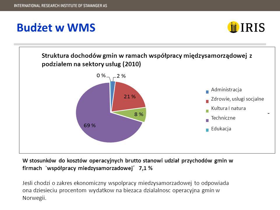 Poziom zarzadzania w różnych formach WMS.