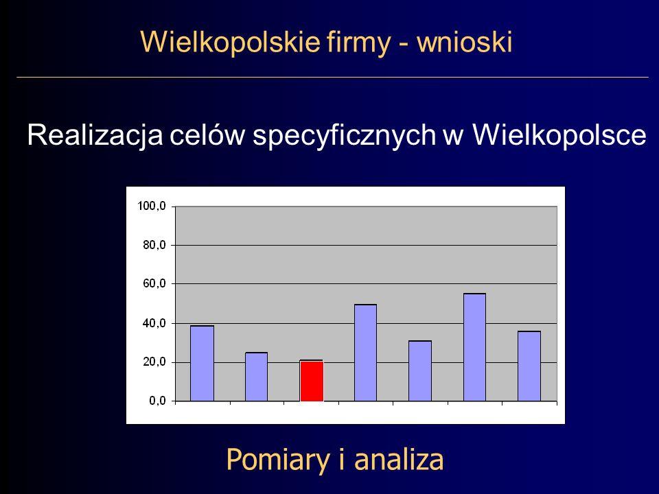 Pomiary i analiza Wielkopolskie firmy - wnioski Realizacja celów specyficznych w Wielkopolsce