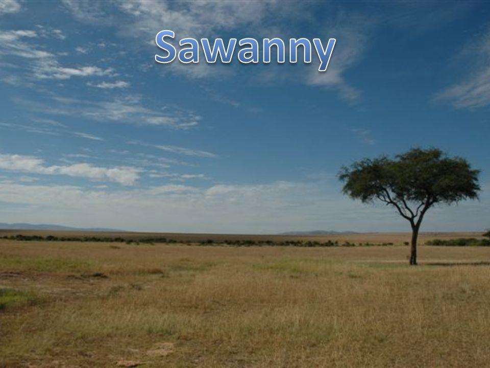 Klimat: podrównikowy suchy - dwie pory : pora deszczowa (dłuższa) i pora sucha (krótsza).