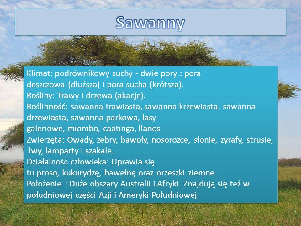 Klimat: podrównikowy suchy - dwie pory : pora deszczowa (dłuższa) i pora sucha (krótsza). Rośliny: Trawy i drzewa (akacje). Roślinność: sawanna trawia