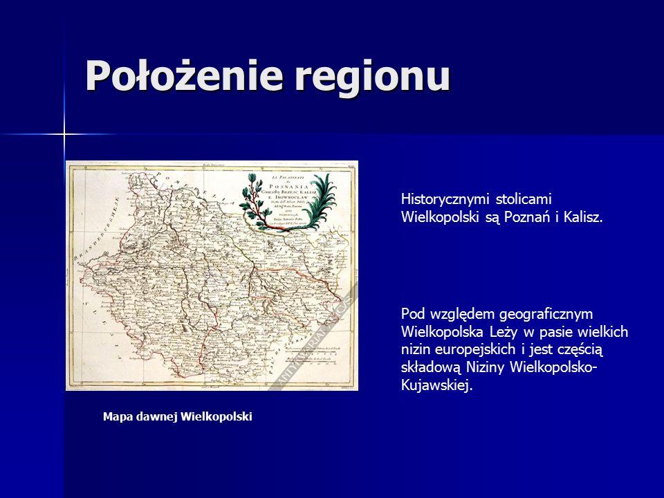 Położenie regionu Historycznymi stolicami Wielkopolski są Poznań i Kalisz.