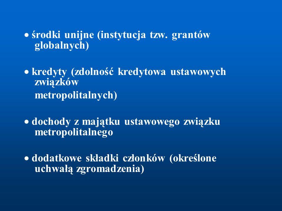  środki unijne (instytucja tzw. grantów globalnych)  kredyty (zdolność kredytowa ustawowych związków metropolitalnych)  dochody z majątku ustawoweg