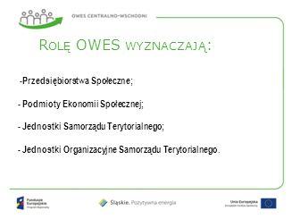 -Przedsiębiorstwa Społeczne; - Podmioty Ekonomii Społecznej; - Jednostki Samorządu Terytorialnego; - Jednostki Organizacyjne Samorządu Terytorialnego.