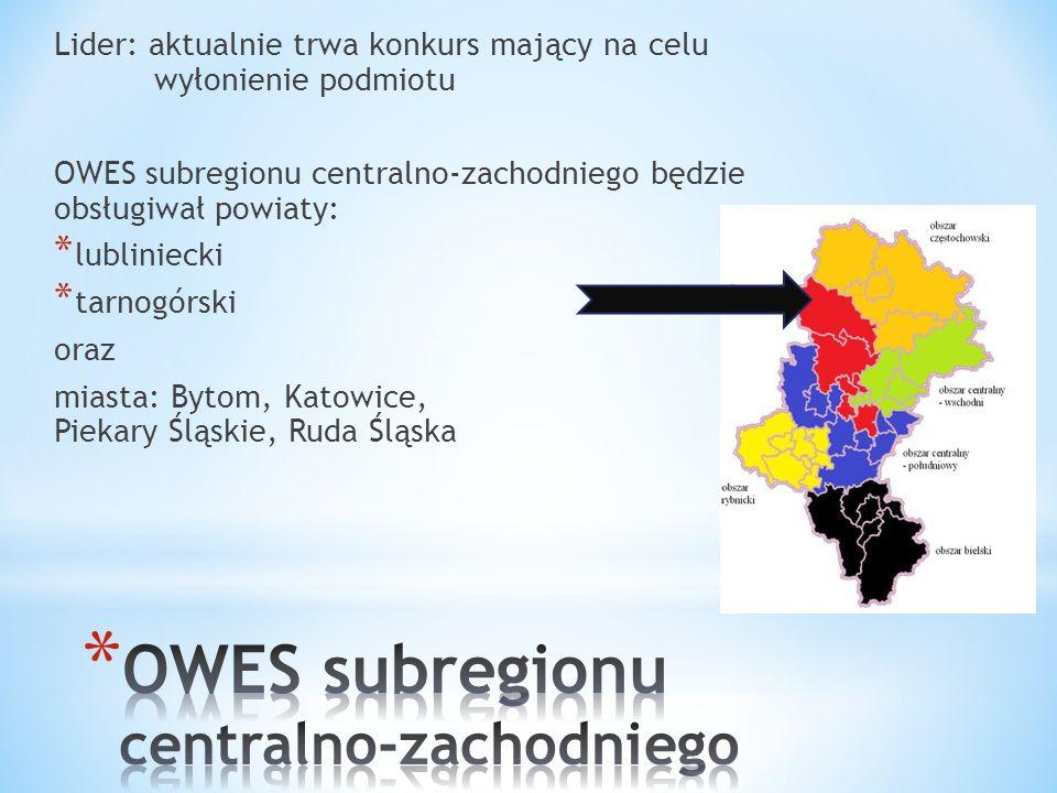 Lider: aktualnie trwa konkurs mający na celu wyłonienie podmiotu OWES subregionu centralno-zachodniego będzie obsługiwał powiaty: * lubliniecki * tarnogórski oraz miasta: Bytom, Katowice, Piekary Śląskie, Ruda Śląska