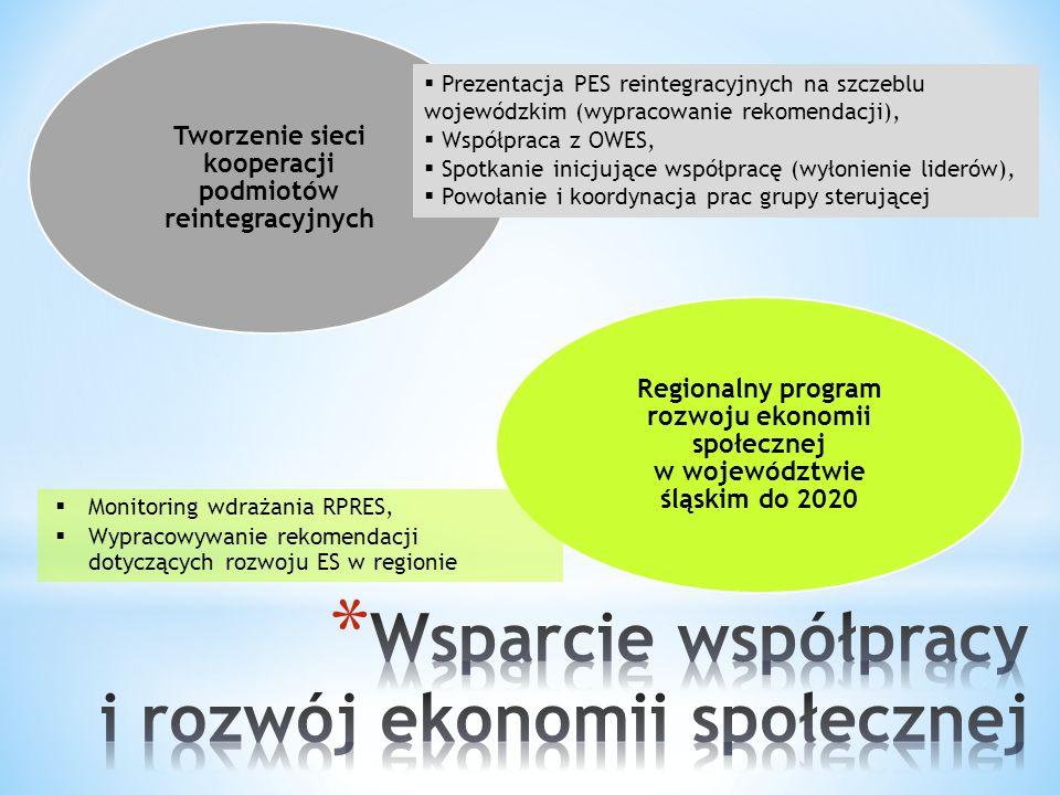Tworzenie sieci kooperacji podmiotów reintegracyjnych Regionalny program rozwoju ekonomii społecznej w województwie śląskim do 2020  Prezentacja PES reintegracyjnych na szczeblu wojewódzkim (wypracowanie rekomendacji),  Współpraca z OWES,  Spotkanie inicjujące współpracę (wyłonienie liderów),  Powołanie i koordynacja prac grupy sterującej  Monitoring wdrażania RPRES,  Wypracowywanie rekomendacji dotyczących rozwoju ES w regionie