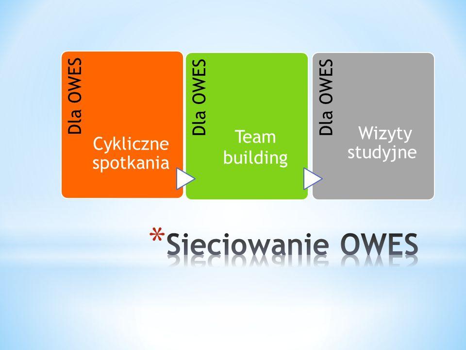Dla OWES Cykliczne spotkania Dla OWES Team building Dla OWES Wizyty studyjne