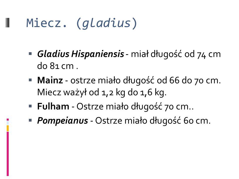 Miecz. (gladius)  Gladius Hispaniensis - miał długość od 74 cm do 81 cm.