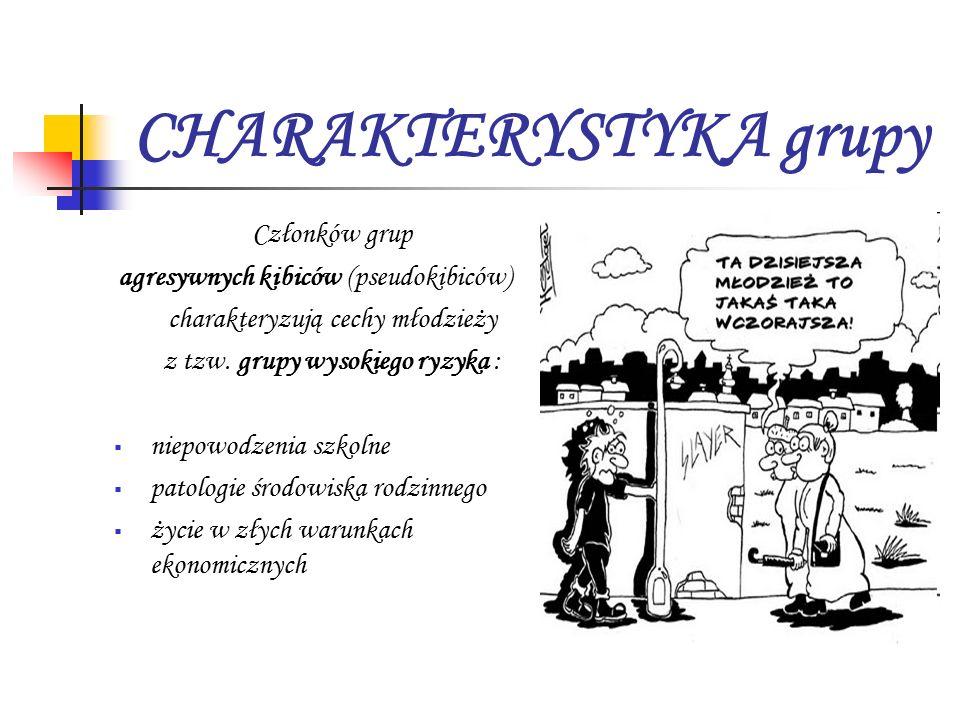 CHARAKTERYSTYKA grupy Członków grup agresywnych kibiców (pseudokibiców) charakteryzują cechy młodzieży z tzw.