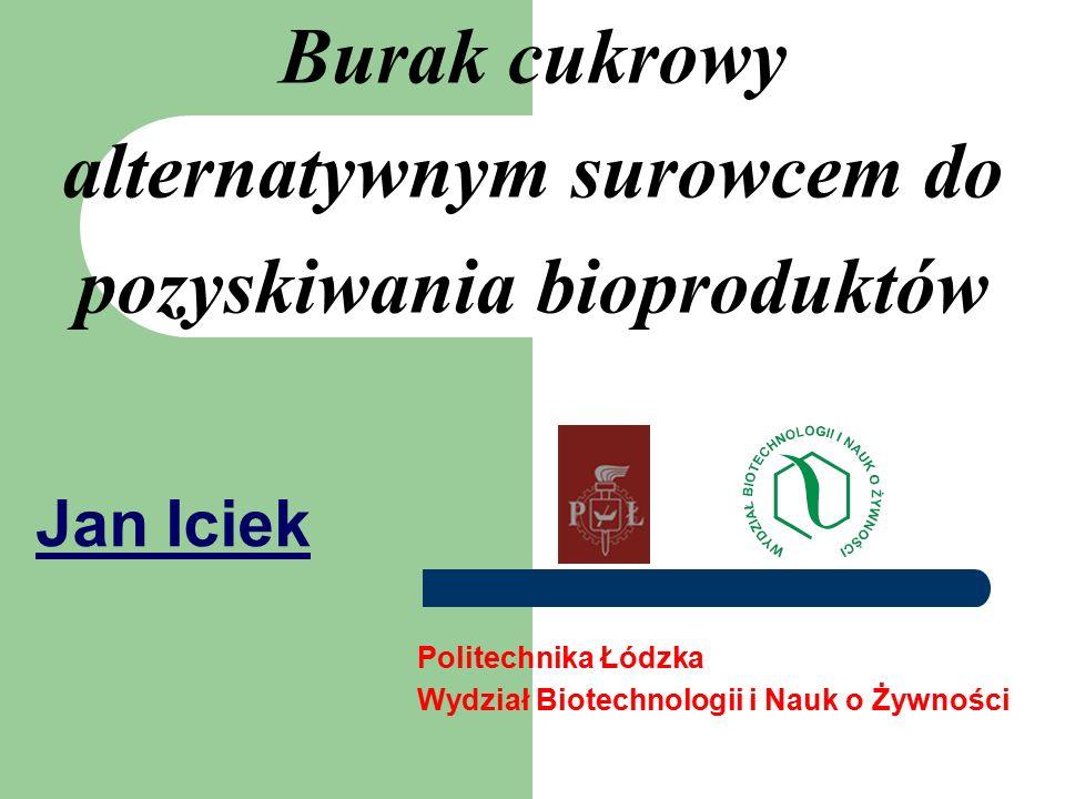 Burak cukrowy alternatywnym surowcem do pozyskiwania bioproduktów Jan Iciek Politechnika Łódzka Wydział Biotechnologii i Nauk o Żywności