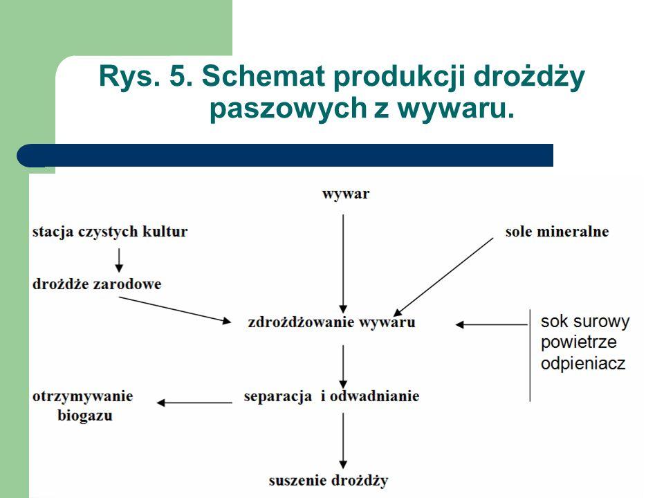 Rys. 5. Schemat produkcji drożdży paszowych z wywaru.