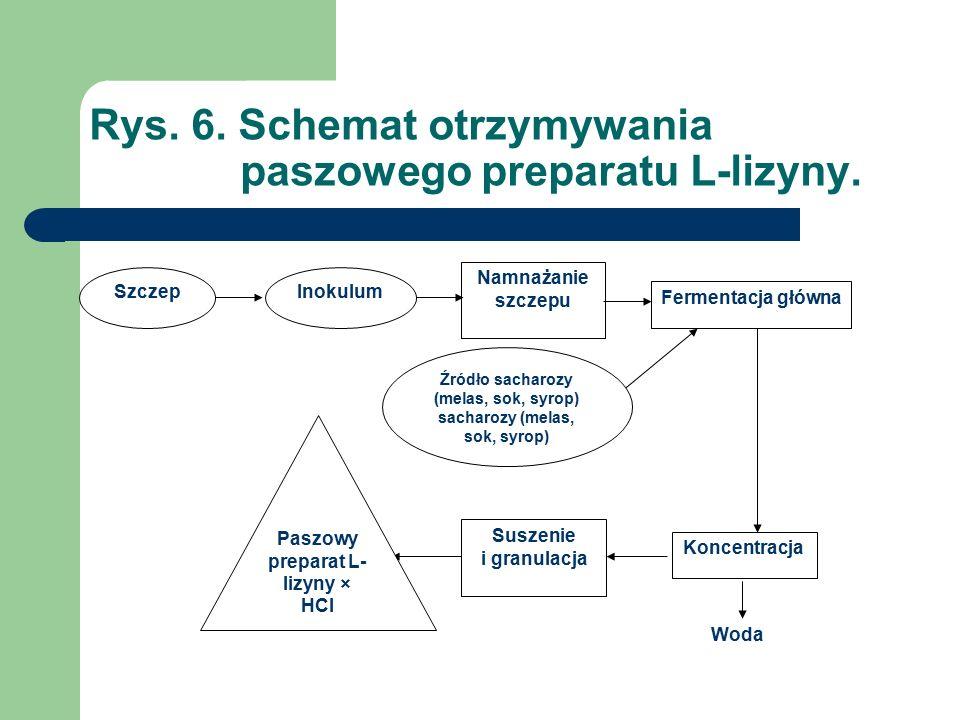Rys. 6. Schemat otrzymywania paszowego preparatu L-lizyny.