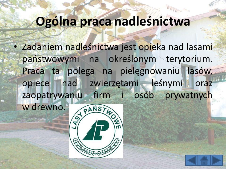 Ogólna praca nadleśnictwa Zadaniem nadleśnictwa jest opieka nad lasami państwowymi na określonym terytorium.