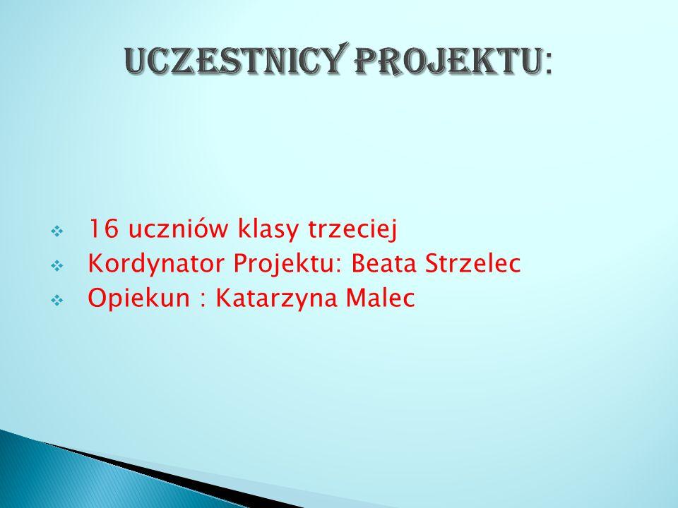  16 uczniów klasy trzeciej  Kordynator Projektu: Beata Strzelec  Opiekun : Katarzyna Malec