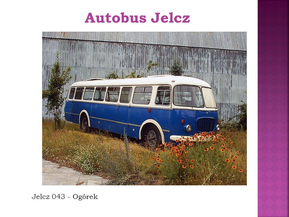 Jelcz 043 - Ogórek Autobus Jelcz