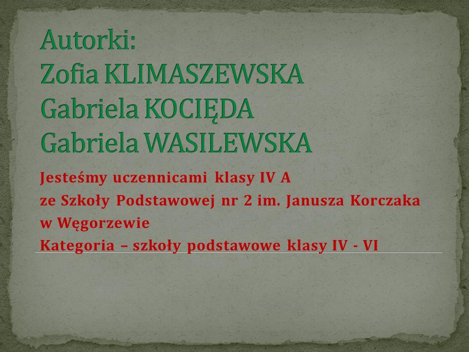 Jesteśmy uczennicami klasy IV A ze Szkoły Podstawowej nr 2 im. Janusza Korczaka w Węgorzewie Kategoria – szkoły podstawowe klasy IV - VI