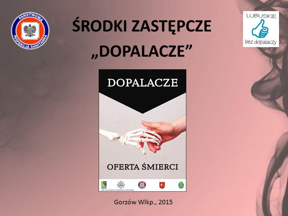 """ŚRODKI ZASTĘPCZE """"DOPALACZE"""" Gorzów Wlkp., 2015"""