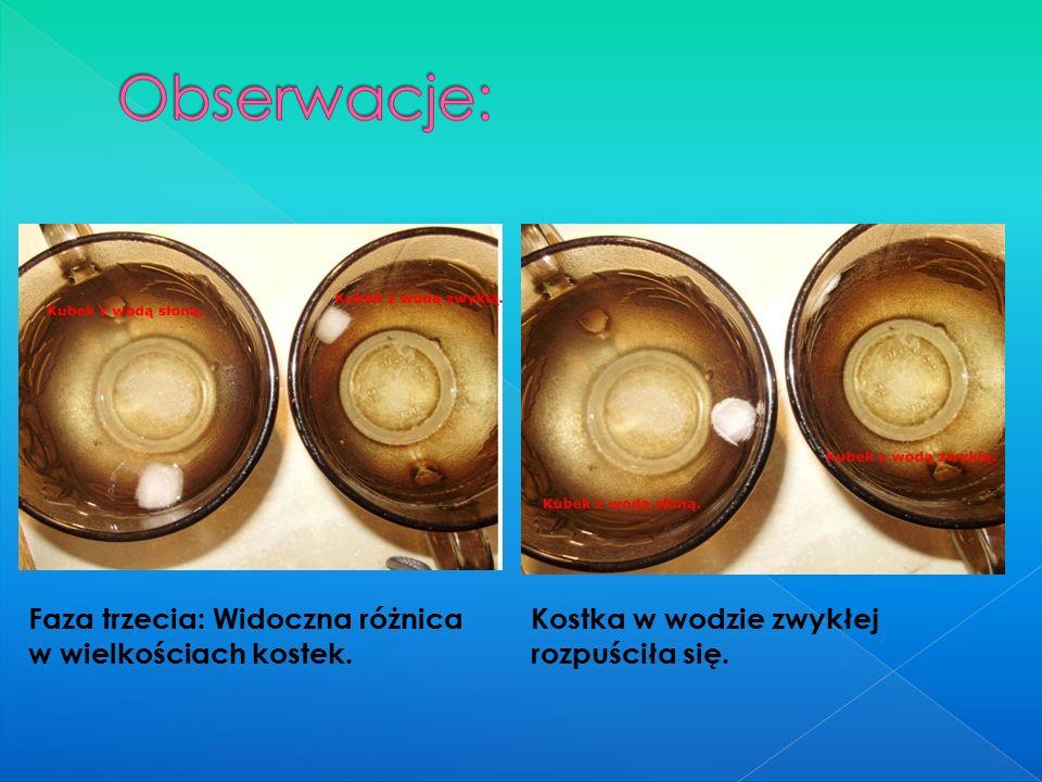Faza trzecia: Widoczna różnica w wielkościach kostek. Kostka w wodzie zwykłej rozpuściła się.