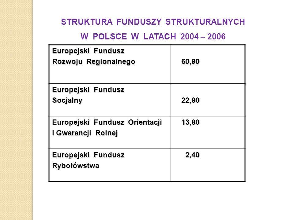 STRUKTURA FUNDUSZY STRUKTURALNYCH W POLSCE W LATACH 2004 – 2006 Europejski Fundusz Rozwoju Regionalnego 60,90 60,90 Europejski Fundusz Socjalny 22,90 22,90 Europejski Fundusz Orientacji I Gwarancji Rolnej 13,80 13,80 Europejski Fundusz Rybołówstwa 2,40 2,40