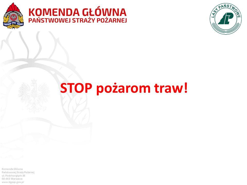 Komenda Główna Państwowej Straży Pożarnej ul. Podchorążych 38 00-463 Warszawa www.kgpsp.gov.pl STOP pożarom traw!