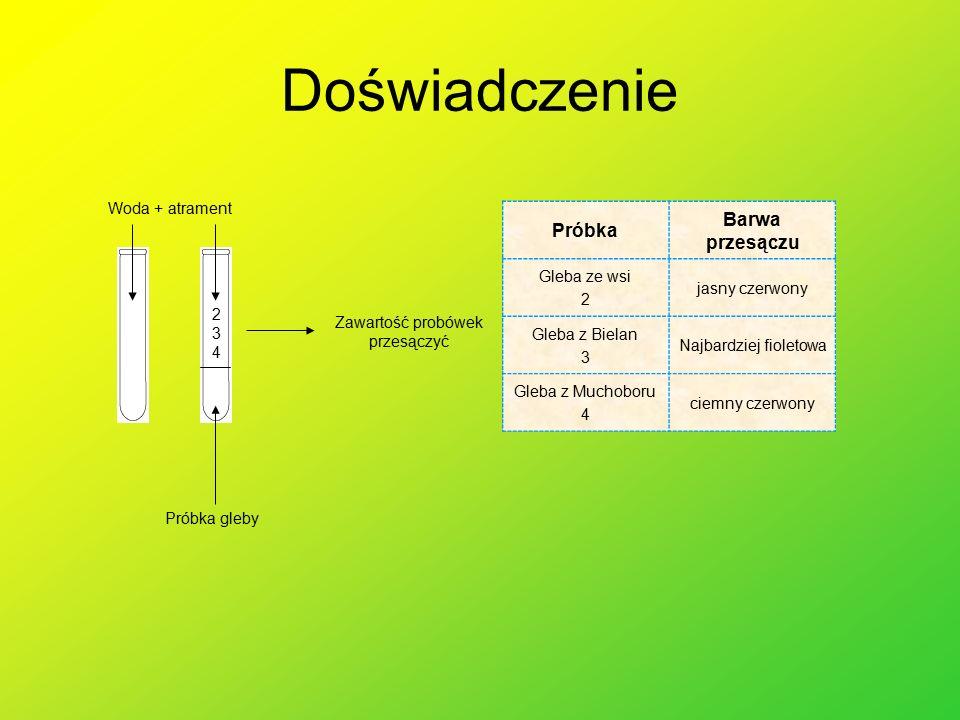 Wnioski W środowisku kwaśnym magnez redukuje azotany(V) do azotanów(III), co skutkuje wydzielaniem się tlenu.