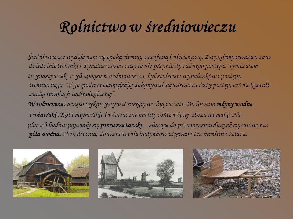 Produkcja papieru w Średniowieczu Czerpanie celulozy na sito.Zdejmowanie papieru z sita.