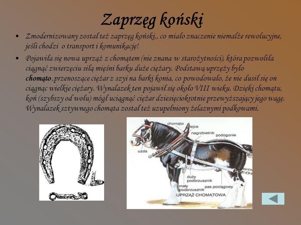 Inne wynalazki Zaprzęg koński Lustra Pojawienie się mydła, guzików Okulary Zegar mechaniczny Proch strzelniczy Odkrycie Ameryki
