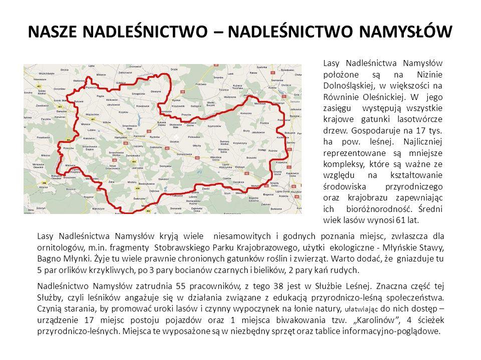 NASZE NADLEŚNICTWO – NADLEŚNICTWO NAMYSŁÓW Lasy Nadleśnictwa Namysłów położone są na Nizinie Dolnośląskiej, w większości na Równinie Oleśnickiej.
