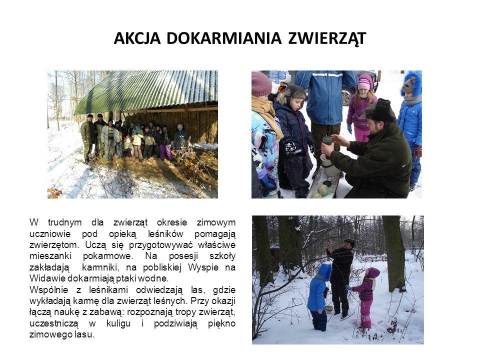 AKCJA DOKARMIANIA ZWIERZĄT W trudnym dla zwierząt okresie zimowym uczniowie pod opieką leśników pomagają zwierzętom.