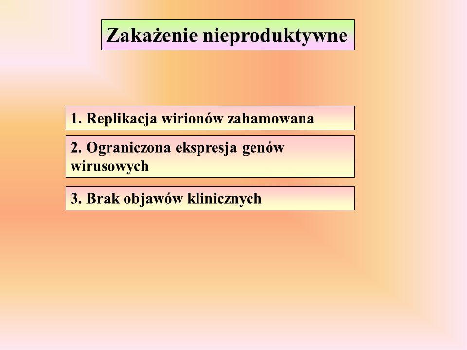 Zakażenie nieproduktywne 1. Replikacja wirionów zahamowana 2. Ograniczona ekspresja genów wirusowych 3. Brak objawów klinicznych