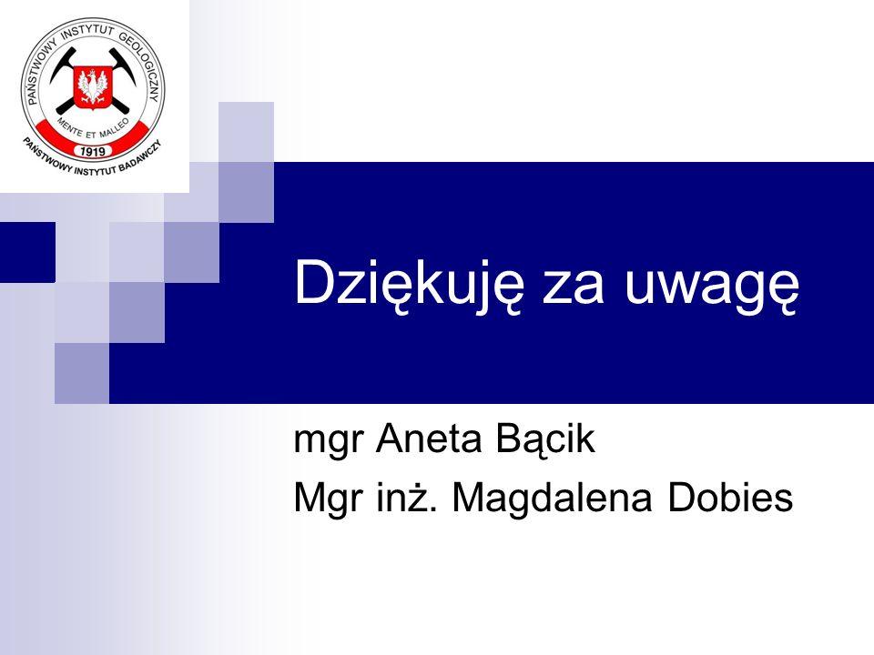 Dziękuję za uwagę mgr Aneta Bącik Mgr inż. Magdalena Dobies