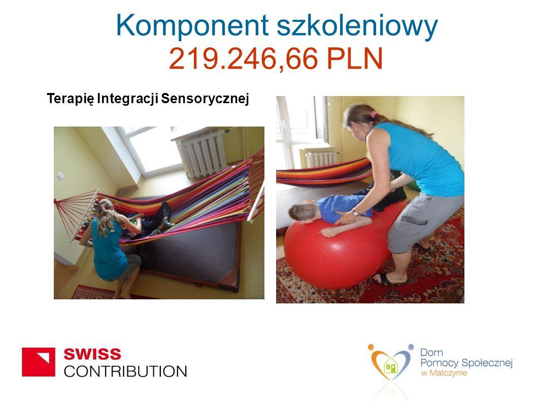 Terapię Integracji Sensorycznej Komponent szkoleniowy 219.246,66 PLN