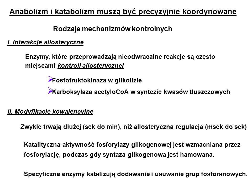 Anabolizm i katabolizm muszą być precyzyjnie koordynowane I.