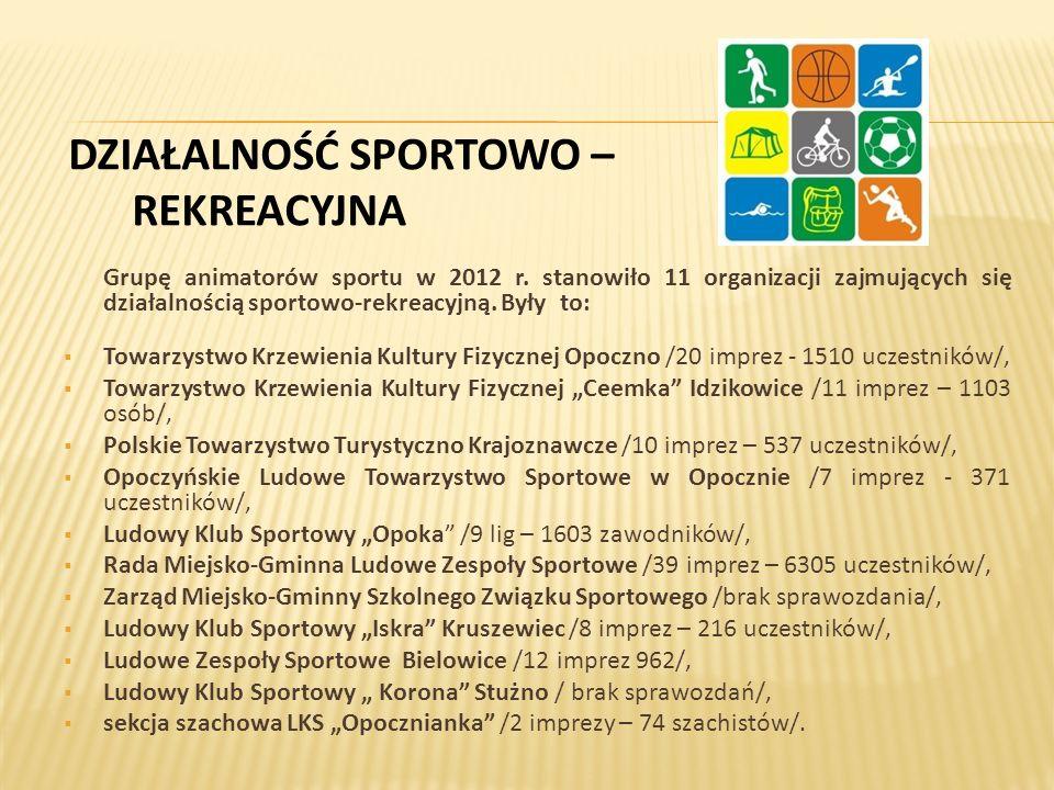 DZIAŁALNOŚĆ SPORTOWO – REKREACYJNA Grupę animatorów sportu w 2012 r.