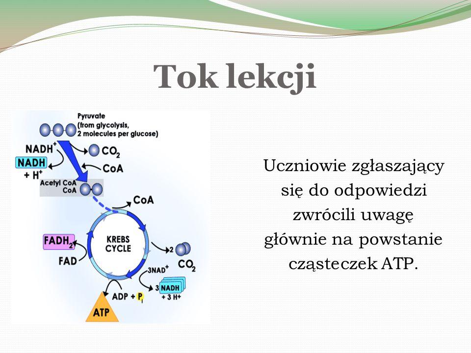 Tok lekcji Uczniowie zgłaszający się do odpowiedzi zwrócili uwagę głównie na powstanie cząsteczek ATP.