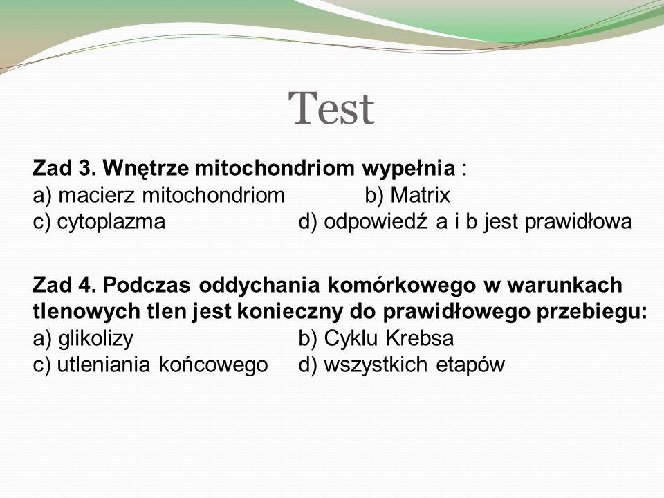 Test Zad 3.